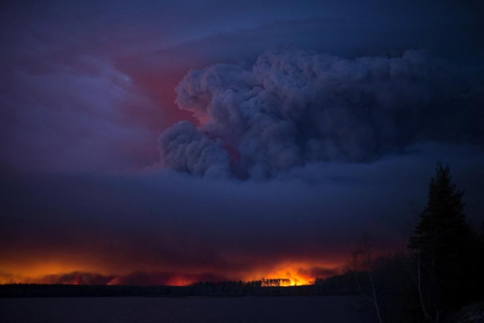 A forest fire seen at night